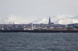 GJ-23-Aurora-Iceland - GJ-23-Whale-watching.jpg