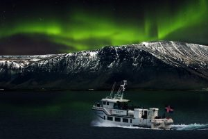 GJ-26-northern-lights-in-style - GJ-26-Northern-Lights-fjord-tour.jpg