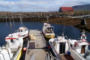 GJ-99-Grand-tour-of-Iceland - GJ-99-Dalir-Region-14.jpg