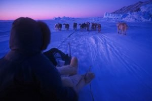 GJ-WGR-14AA-Greenland-winter-experience - GJ-WGR-14AA-Ilulissat-Winter-17-001.jpg - Image copyright by courtesy of Visit Greenland and their contracted photographers