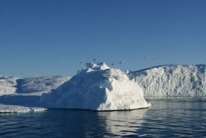 GJ-WGR-4-Amazing-days-Ilulissat-4-days - GJ-WGR-4-Midnight-sailing-at-the-Icefjord-1.jpg