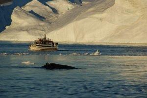 GJ-WGR-4-Amazing-days-Ilulissat-4-days - GJ-WGR-4-Midnight-sailing-at-the-Icefjord-19.jpg